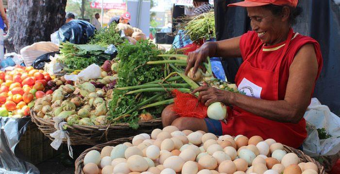 Semana do Meio Ambiente: 70% dos alimentos são produzidos por pequenos agricultores