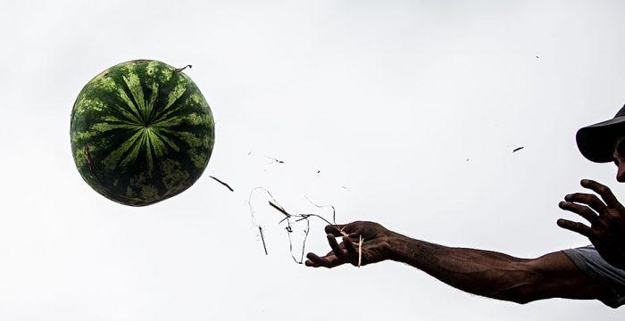 Até metade dos alimentos produzidos no mundo acaba no lixo, diz ONU