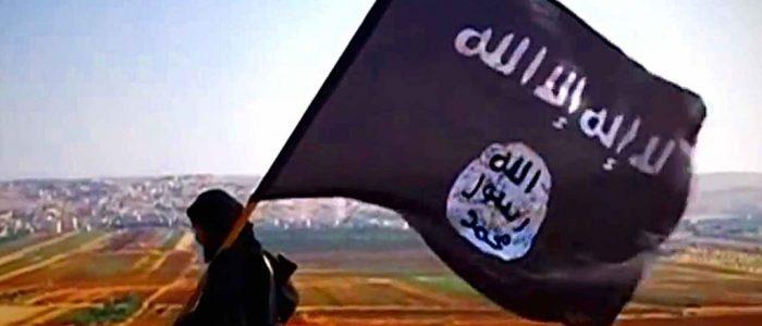 Ascensão e Queda de um Califado