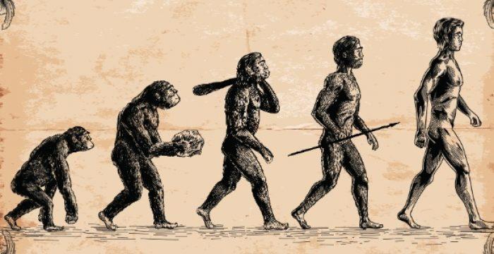 Homo erectus já andava como seres humanos há 1,5 milhão de anos