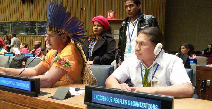Cimi recebe status consultivo pela ONU