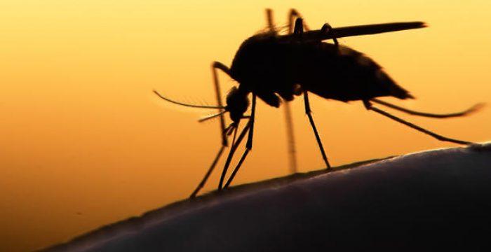 As doenças que atingem mais de 1 bilhão de pessoas e são 'esquecidas' pela indústria