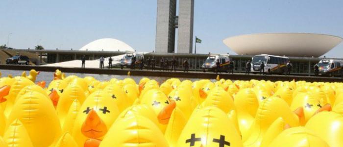 Do subdesenvolvimentismo da burguesia brasileira