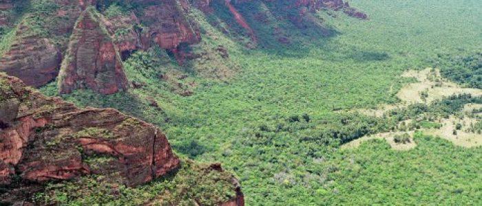 Brasil devasta o Cerrado antes de conhecê-lo