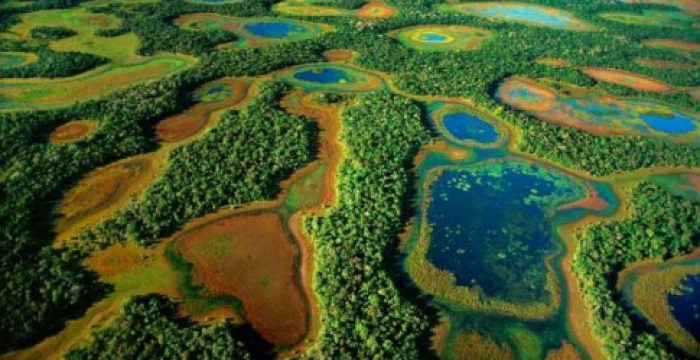 Pantanal: em breve, um imenso campo de soja?