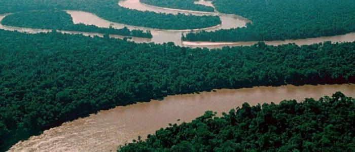 Rio Amazonas é mais velho do que se pensava; gigante tem 9 milhões de anos