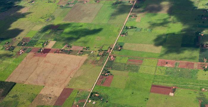 Dinheiro, trabalho e terra na agenda desestruturante de política agrária