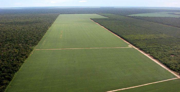 América Latina tem pior distribuição de terras do mundo, diz FAO