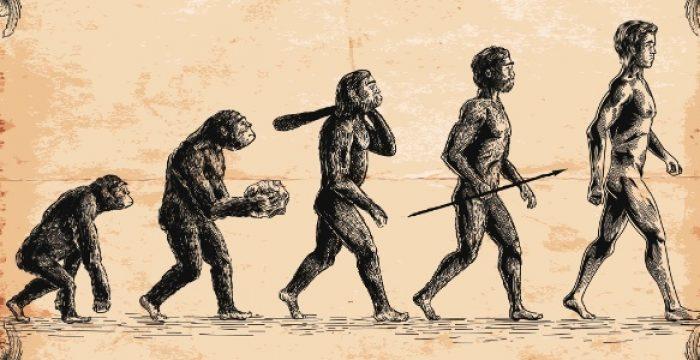Como a baixa estatura ajudou nossos ancestrais a sobreviver à Era do Gelo