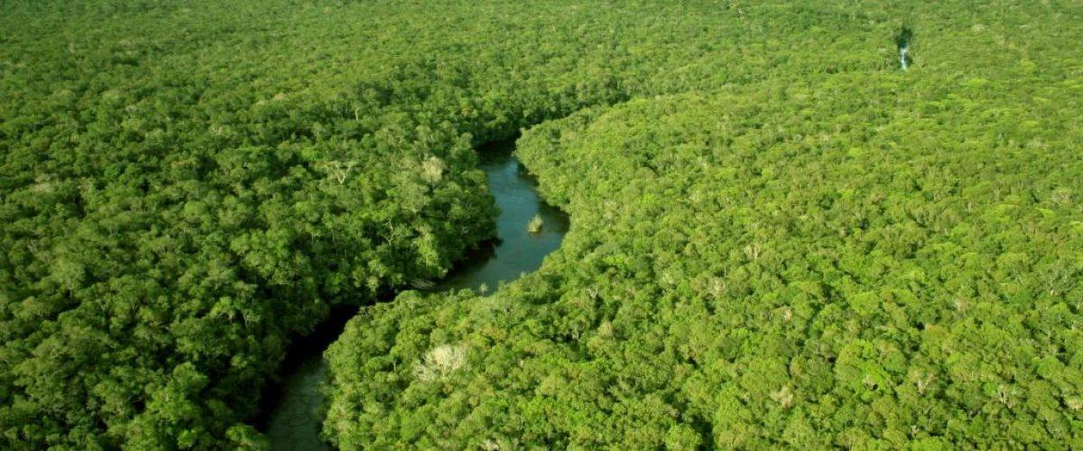 Amazônia, o paraíso fiscal das mineradoras