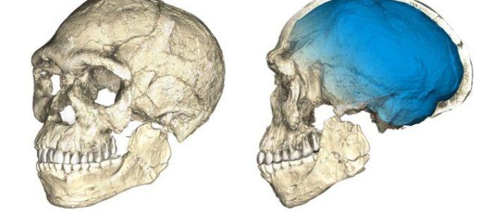 Por que fósseis achados no Marrocos mudam tudo o que sabemos sobre a origem da humanidade