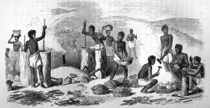 "Freyre: ""nas senzalas da Bahia de 1835 havia mais gente sabendo ler do que nas casas-grandes"""