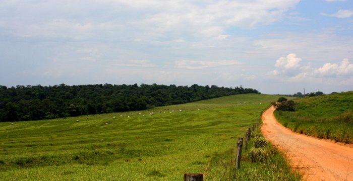 'Está em jogo a reestruturação do mercado formal de terras no Brasil'