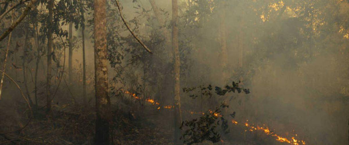 A Amazônia está secando, mas o Brasil só quer farra