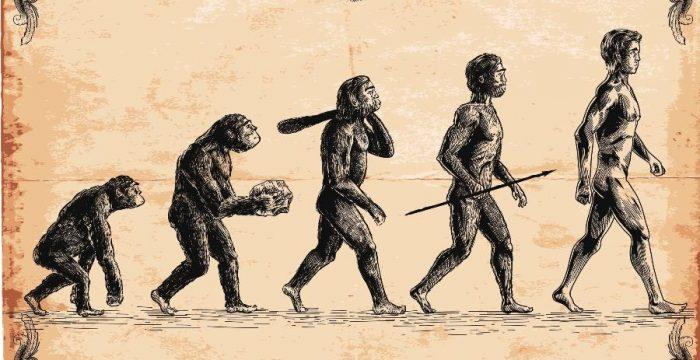 O que a ciência já sabe sobre o surgimento e a evolução da espécie humana