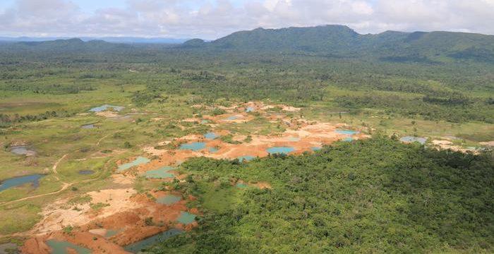 """""""Ricos com influência são os que mais desmatam a Amazônia"""""""